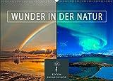 Wunder in der Natur (Wandkalender 2022 DIN A2 quer)