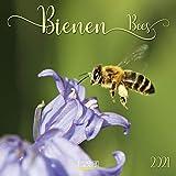 Bienen 2021: Broschürenkalender mit Ferienterminen. Format: 30 x 30 cm