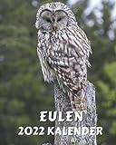 Kalender Eulen 2022: Monatliches Kalenderbuch 2022 mit Bildern von geheimnisvollen Eulen