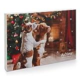 AniForte Adventskalender für Hunde 2020 - Natürliche Hundesnacks getreidefrei | Adventszeit Snacks | Leckerli ohne Farb- und Konservierungsstoffe | Weihnachtskalender mit Zellstoff-Einlage
