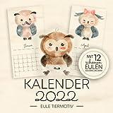 Kalender 2022 - Eule Tiermotiv: Wandkalender 2022 Vögel Tiere für Kinder und Erwachsene im Vintage Stil - Monatskalender 2022 - Mit 12 Schönen Eulen Aquarellbildern
