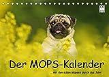 Der MOPS-Kalender (Tischkalender 2022 DIN A5 quer)