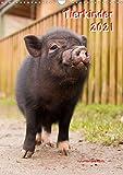 Tierkinder (Wandkalender 2021 DIN A3 hoch)