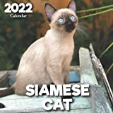 2022 Siamese Cat Calendar: A Monthly and Weekly 12 Months Calendar 2022 With Pictures of the Siamese Cat For Desk, Office to Write in Appointment, ... Ideas For Men, Women, Girls, Boys in Bulk