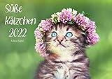 Edition Seidel Süße Kätzchen Premium Kalender 2022 DIN A3 Wandkalender Katzenkalender Katzen Kinder