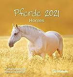 Pferde 2021 - Postkarten-Kalender - Kalender-mit-Postkarten - zum-raustrennen - 16x17: Horses