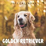 Golden Retriever 2022 Calendar: 12-month Calendar - Square Small Gorgeous Calendar 7x7' for planners with large grid for note