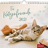 Für Katzenfreunde - Kalender 2021 - Monatskalender - Groh-Verlag - Wandkalender mit stimmungsvollen Fotografien und Zitaten - 21 cm x 21,3 cm