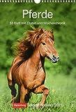 Pferde Kalender 2021: Wochenplaner, 53 Blatt mit Zitaten und Wochenchronik
