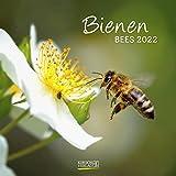 Bienen 2022: Broschürenkalender mit Ferienterminen. Format: 30 x 30 cm