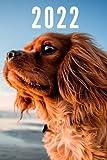 2022: Taschenkalender und Organizer für 2022 zum Planen und Organisieren von Terminen mit lustigen Hund - Wochenplaner von Januar bis ... Quartalsübersicht, Geburtstagsplan & Ferien