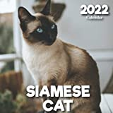 2022 Siamese Cat Calendar: A Monthly and Weekly Calendar 2022 - 12 months - With Siamese Cat Pictures,to Write in Appointment, Birthday, Events Cute Gift Ideas For Men, Women, Girls, Boys in Bulk