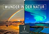 Wunder in der Natur (Wandkalender 2021 DIN A2 quer)