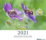 Bienenträume 2021: Fotokalender Bienenjournal 2021