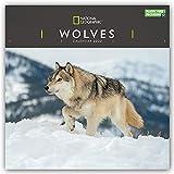 National Geographic Wolves – Wölfe 2022: Original Carousel-Kalender [Mehrsprachig] [Kalender] (Wall-Kalender)
