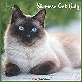 Siamese Cat Only 2021 Wall Calendar: Official Siamese Cat Only Calendar 2021, 18 Months