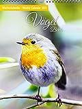 Vögel 2021: Foto-Wochenkalender