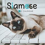 Siamese 2022 Calendar: 12-month Calendar 2022 from Jan 2022 to Dec 2022 in mini size 7x7 inch
