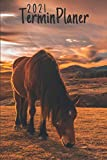 Terminplaner 2021 Pferde: pferd kalender 2021   Wochenplaner 2021 A5 Planer organizer 2021   pferdekalender 2021 und Terminkalender - Wochenkalender - ... Geschenk Pferdereiter & horse rider lovers