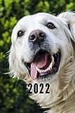2022: Taschenkalender und Organizer für 2022 zum Planen und Organisieren von Terminen mit lustigem Hund - Wochenplaner von Januar bis ... Quartalsübersicht, Geburtstagsplan & Ferien