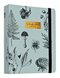 Kokonote Schulplaner 2021 2022 - Ringbuch Kalender Botanical Terminplaner 2021/2022 - Terminkalender 2021 2022 17 Monate