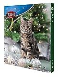 Trixie 9269 Vorweihnachtszeit Adventskalender für Katzen, 30 × 34 × 3,5 cm