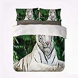 Popun Bettbezug Set Tiger Nice 3 Bettwäsche Set, Albino Bengal Katze sitzt auf einem Felsen im Wald Südostasien Indigene Arten für Wohnzimmer