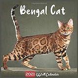 Bengal Cat 2021 Wall Calendar: Official Bengal Cats Breed Calendar 2021, 18 Months