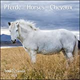 Pferde Horses 2021 - Broschürenkalender - Wandkalender - mit herausnehmbarem Poster - Format 30 x 30 cm