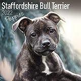 Staffordshire Bull Terrier Puppies - Staffordshire Bull Terrier Welpen 2022 - 16-Monatskalender: Original Avonside-Kalender [Mehrsprachig] [Kalender] (Wall-Kalender)