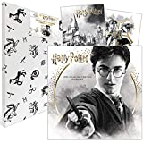 Harry Potter 2021 Calendar: Includes 2 Posters