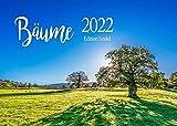 Edition Seidel Bäume Premium Kalender 2022 DIN A3 Wandkalender Natur Wald