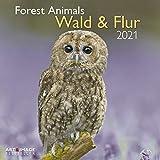 Wald & Flur 2021 - Wand-Kalender - Broschüren-Kalender - A&I - 30x30 - 30x60 geöffnet: Forest Animals