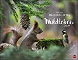 Vadim Trunov: Waldtiere Posterkalender Kalender 2021