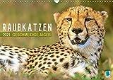 Raubkatzen: Geschmeidige Jäger (Wandkalender 2021 DIN A3 quer)