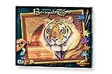 Schipper 609130454 Malen nach Zahlen, Indien Bengal Tiger Bilder malen für Erwachsene, inklusive Pinsel und Acrylfarben, 40 x 50 cm