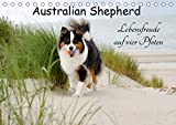 Australian Shepherd - Lebensfreude auf vier Pfoten (Tischkalender 2021 DIN A5 quer)