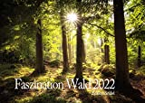 Edition Seidel Faszination Wald Premium Kalender 2022 DIN A3 Wandkalender Natur