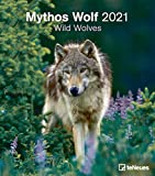 Mythos Wolf 2021 - Foto-Kalender - Wand-Kalender - 30x34: Wild Wolves