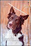 Stefan Heine Hunde Quizkalender 2022 Wochenkalender - Quizkalender - Rätselkalender - Jede-Woche-neue-Rätsel - Tierkalender - 23,7x34