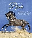 Pferde 2021: Großer Wandkalender. Foto-Kunstkalender - Pferdekalender mit literarischen Zitaten. Hochformat 45,5 x 55 cm.