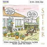 Stier Mini 2022: Sternzeichenkalender-Cartoon - Minikalender im praktischen quadratischen Format 10 x 10 cm.