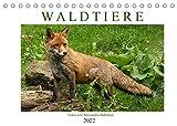 Waldtiere (Tischkalender 2022 DIN A5 quer)