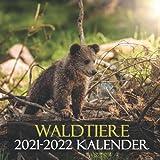 Waldtiere 2021-2022 kalender: Wandkalender - 20 Monate - Naturkalender
