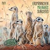 Meerkats/Erdmännchen 2021: Kalender 2021 (Artwork Edition)