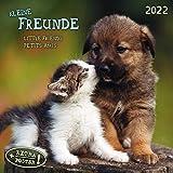 Little Friends/Kleine Freunde 2022: Kalender 2022 (Artwork Media)
