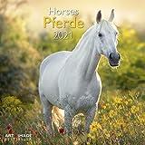 Pferde 2021 - Wand-Kalender - Broschüren-Kalender - A&I - 30x30 - 30x60 geöffnet - Tier-Kalender: Horses