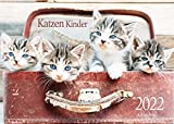 Edition Seidel Katzen Kinder Premium Kalender 2022 DIN A3 Wandkalender Katzenkalender