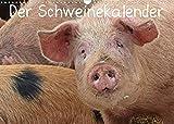 Der Schweinekalender (Wandkalender 2022 DIN A3 quer)