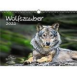 Wolfszauber DIN A3 Kalender für 2022 Wolf und Wölfe - Geschenkset Inhalt: 1x Kalender, 1x Weihnachts- und 1x Grußkarte (insgesamt 3 Teile)